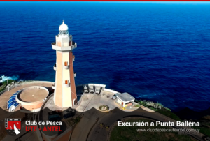 Excursion-punta-ballena-club